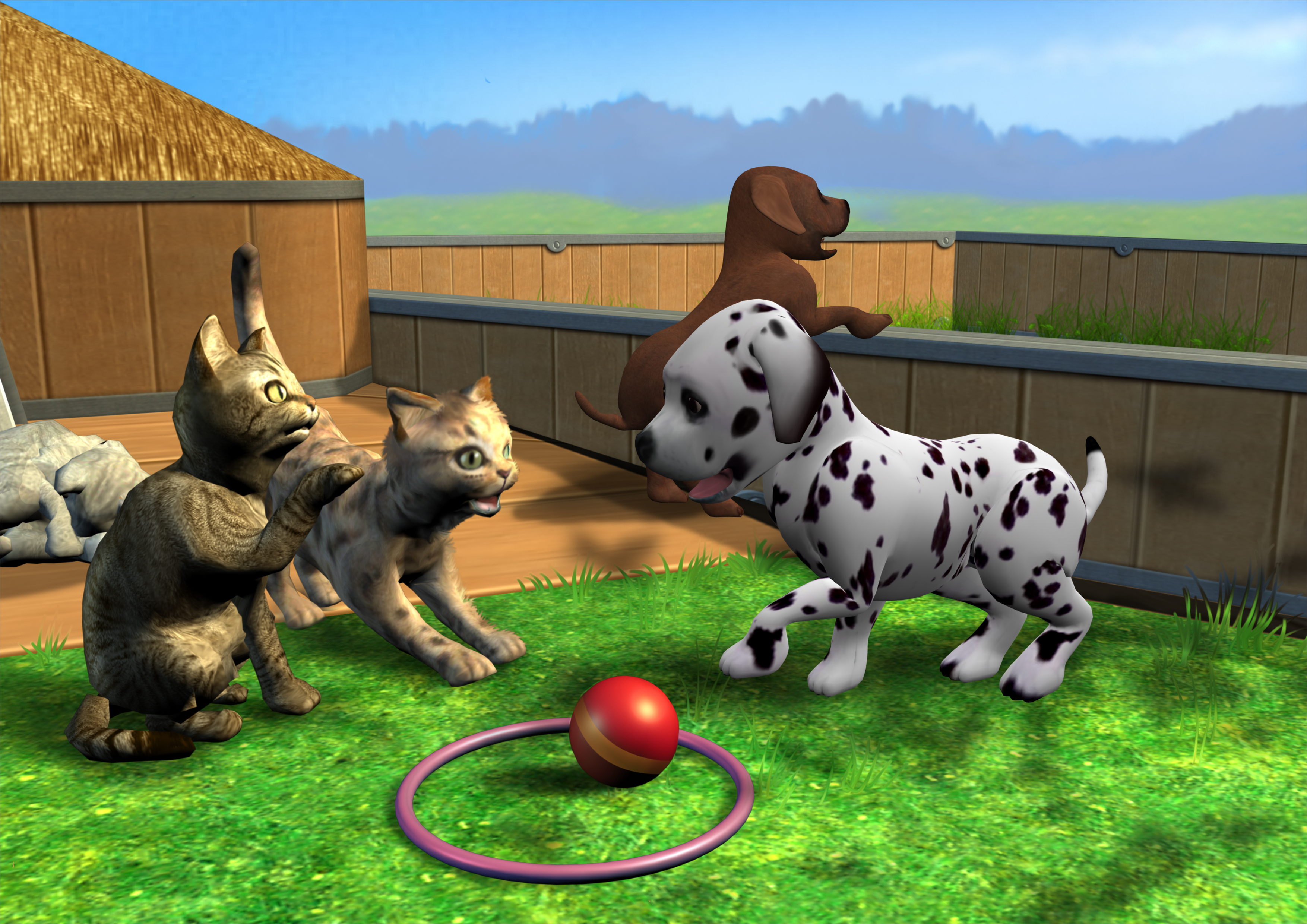 CTR-N_KPTE_PetSchool3D_BackgroundArt_1
