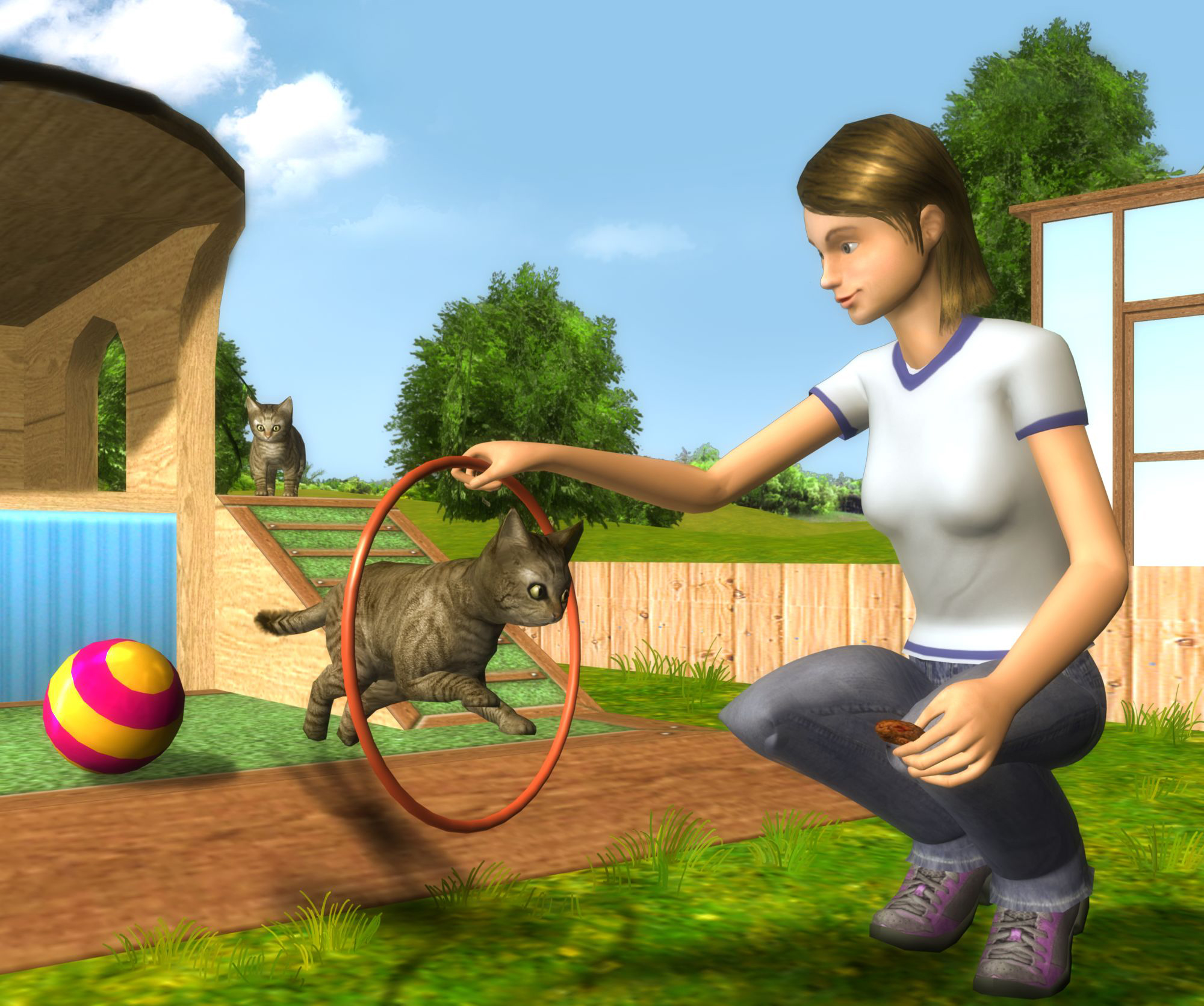CTR-N_KPTE_PetSchool3D_BackgroundArt_3