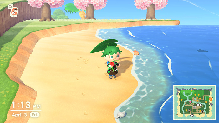 Hanging out at the beach in Animal Crossing: New Horizons