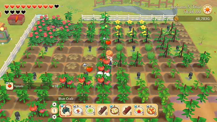 Harvesting crops in Story of Seasons: Pioneers of Olive Town