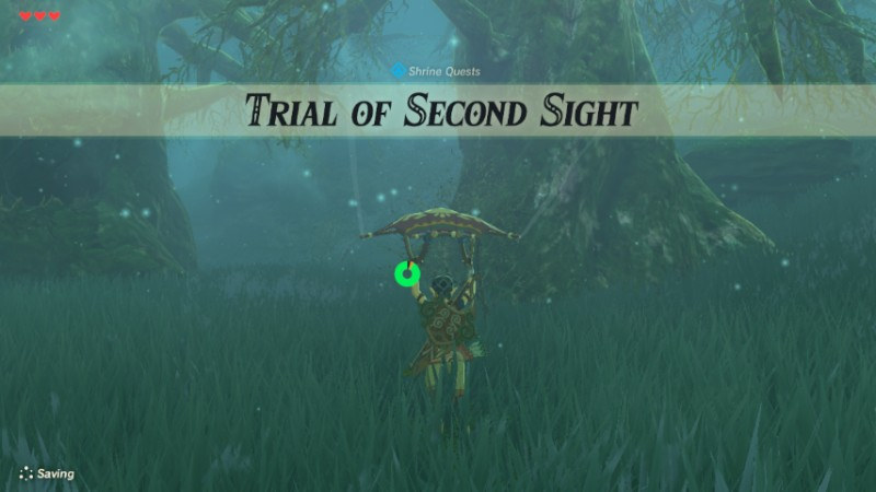 Trial Of Second Sight