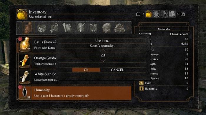dark souls item selection screen
