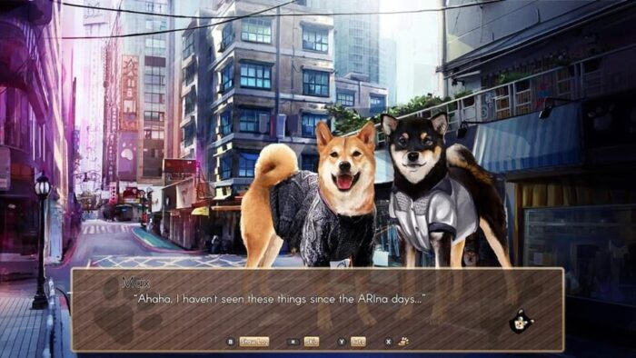 A Summer with the Shiba Inu Story