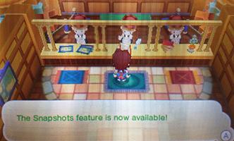 Screenshot clerk in Fantasy Life